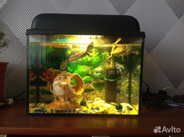 Аквариум 15 литров фото