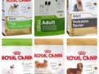 Корм для собак Royal Canin разный