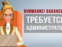 Помощник руководителя в центр дрессировки собак — Вакансии в Санкт-Петербурге