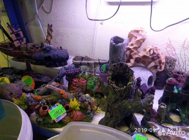 Decorations for aquarium 89081257208 buy 4
