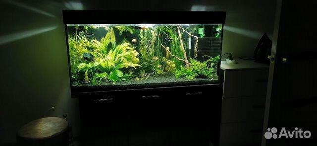 Украшение для аквариума 89649933848 купить 1