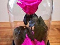 Роза в колбе цвет фуксия