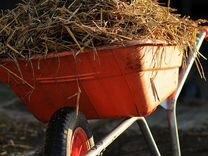 Опилки, Стружка, Сено, Солома, в мешках по 60 литр